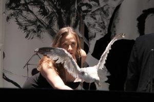 MITsp 2015 – Espetáculo: A gaivota